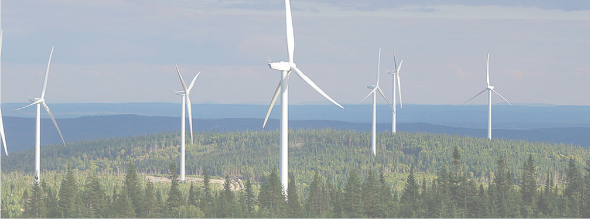 BANKS Renewables.png